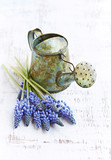 A small vintage watering can and spring flowers - 195770078