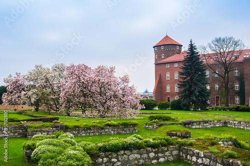 historyczny-krolewski-wawel-kasztel-w-wiosnie-z-kwitnieniem