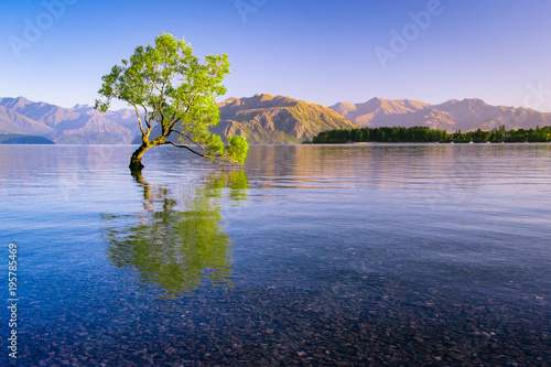 Fotobehang Natuur Lake Wanaka, New Zealand