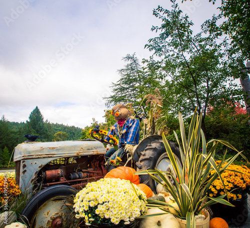 Aluminium Trekker harvest and autumn display