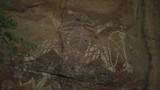 Indigenous Australian Paintings on Rock - 195819610