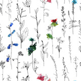 Seamless pattern with drawing herbs and flowers - 195821496