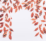 Frame made of red yellow gold leaves and branches on white background. Flat lay, top view. Autumn layout concept - 195830833