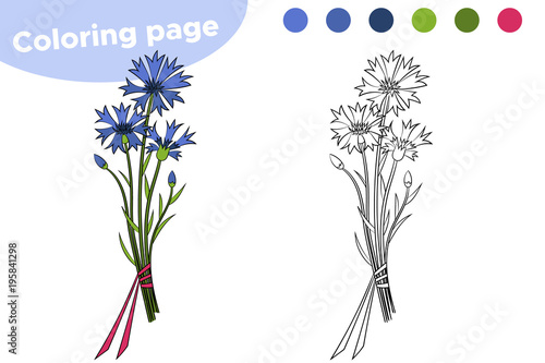 Coloring page for children. Hand drawn contour line flower Cornflower. Vector illustration.