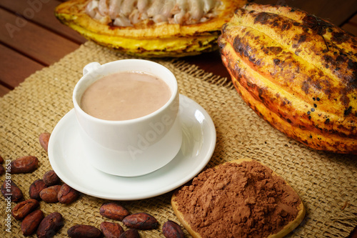 Foto op Canvas Chocolade Hot chocolate drink, raw cocoa fruit, cacao beans, powder