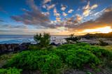 Sunset on la Reunion island coast - 195875606