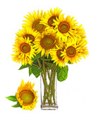 a big bunch of sunflowers in a vase - 195877403