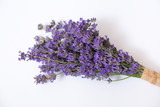 Bunch of lavender flower on white. - 195885601