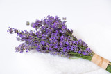 Bunch of lavender flower on white. - 195885617