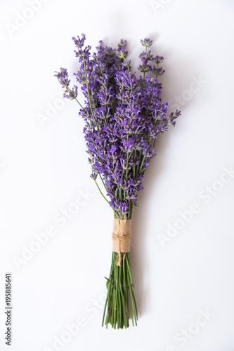 Fotobehang Lavendel Bunch of lavender flower on white.