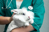doctor in a green uniform stands and holds a white rabbit
