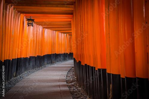 Poster Kyoto Tori walk