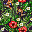 Seamless pattern with tropical flowers and leaves. Hibiscus, plumeria and strelicia flowers realistic. - 195930622