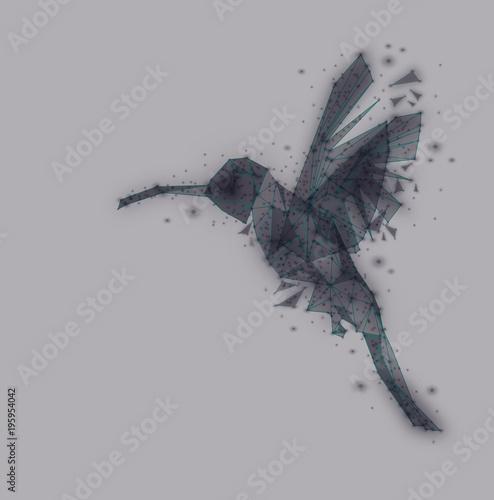 Odosobniony niski poli- Hummingbird, zwierzęcy geometryczny, czarny i biały styl, wektor