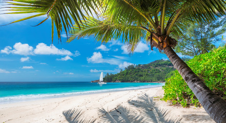 Sandy beach with palm trees and a sailing boat in the turquoise sea on Paradise island. Fashion travel and tropical beach concept.