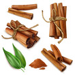 Realistic Cinnamon Sticks Set