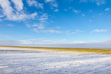 Field with rest of snow under blue sky - 195981624