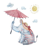 Cute baby elephant in swimsuite and large brimmed hat under sun isolated on background - 195987819