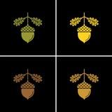 Acorn flat vector icon. Oak flat vector icon