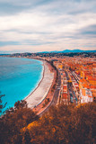 high formated picture of Nice, france with trees in the front - 196015285