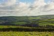Fields on Exmoor near Lynton, Devon, England
