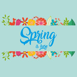 spring is here note decoration vector illustration