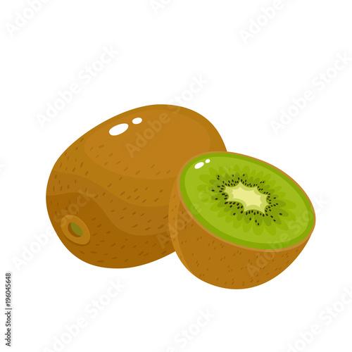 Bright vector illustration of colorful fresh kiwi isolated on white