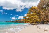 Amazing beach and vegetation in Seychelles. Autumn colors