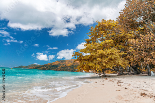 Fotobehang Tropical strand Amazing beach and vegetation in Seychelles. Autumn colors
