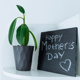 happy mother day text on black board written with chalk. flower in pot near black board