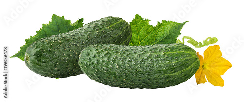 Foto op Aluminium Verse groenten Fresh cucumbers with leafs isolated on white background with clipping path