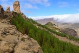 Roque Nublo mountain in Gran Canaria, Canary Islands, Spain - 196058494