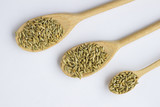grains of barley in a spoon on a white background. Top view. - 196068850