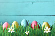 Painted Easter eggs in a green grass on a meadow and flowers.