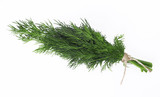 A bunch of fresh dill tied with a rope isolated on a white background - 196087891