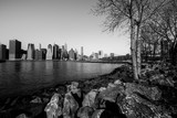 Landscape of Manhattan and Brooklyn Bridge. View of Brooklyn Bridge Park to Manhattan.