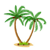 Two coconut palm trees with grass