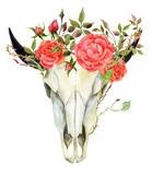 watercolor buffalo skull - 196127836