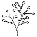 branche christmas decoration icon vector illustration design - 196161249