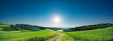 Green field and clear blue sky sun panorama