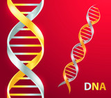 Gold and silver Dna icon. Vector illustration on red background - 196174886