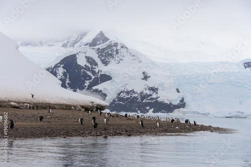 Antarctic seascape with ice