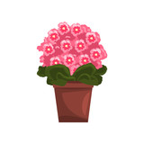 Flowering pink violet indoor house plant in brown pot, element for decoration home interior vector Illustration on a white background
