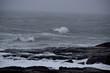 Maine Ocean Waves in Winter Snow Storm