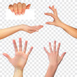 Realistic 3D Silhouette of  hand on White Background. Vector Illustration