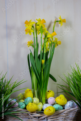 Easter eggs and chick hiding in the grass with daffodil