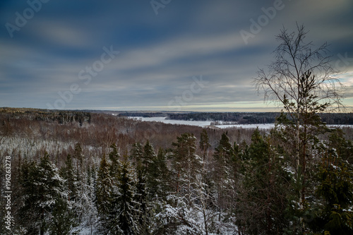 Foto op Canvas Zwart view of Swedish winter forest and a small lake