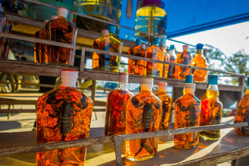 Close up of dead animals inside of whiskey flasks, prepared by locals on an island off the coast of Laos, at the Golden Triangle Special Economic Zone Chinatown