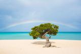 Sun, sand, rainbows