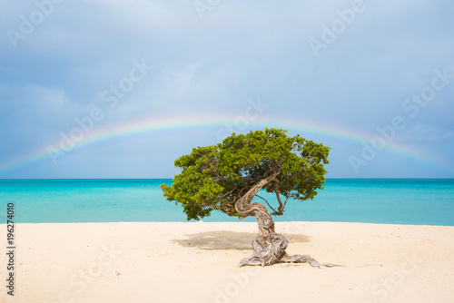 Fotobehang Tropical strand Sun, sand, rainbows
